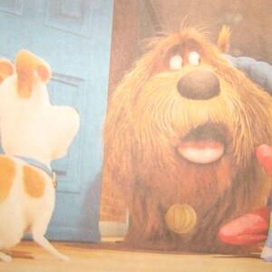 """Spenden-Aktion zum Film """"PETS"""" für das Tierheim"""