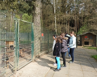 Girls' Day im Tierheim Fulda am 27.04.2017