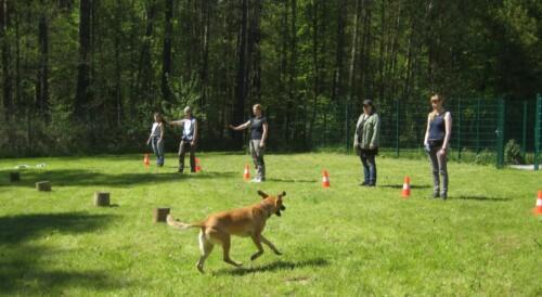 Hundeschule_07.05.16_3