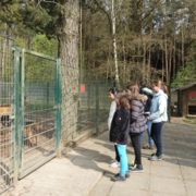 Girls' Day im Tierheim Fulda am 27.04.2017